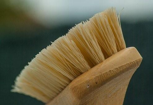 ¿Por qué el cepillo de dientes de bambú ha causado una revolución?
